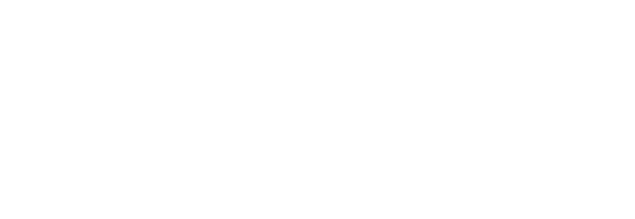 BERHAM Customs Logo